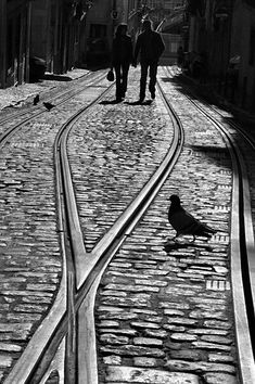 Street photography by Rui Palha