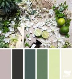 35 ideas for nature color palette design seeds Nature Color Palette, Colour Pallette, Colour Schemes, Color Combos, Design Seeds, Paleta Pantone, Nature Inspired Bedroom, Color Concept, Style Deco
