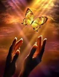 It's a beautiful world! — ❥‿↗⁀♥ simply-beautiful-world Butterfly Kisses, Butterfly Art, Butterfly Meaning, Simply Beautiful, Beautiful World, Prophetic Art, Butterfly Pictures, Butterfly Wallpaper, Beautiful Butterflies