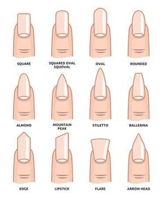 Illustration of Different nail shapes Fingernails fashion Trends vector art clipart and stock vectors. Image The post Illustration of Different nail shapes Fingernails fashion Trends vector art c appeared first on nageldesign. Summer Acrylic Nails, Best Acrylic Nails, Spring Nails, Matte Nail Art, Nail Deaigns, Acrylic Nails Coffin Matte, Oval Nail Art, Wedding Acrylic Nails, Polygel Nails