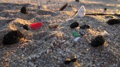 Plastic Garbage in Oceans: Understanding Marine Pollution from Microplastic Particles - Science Daily, April 17, 2012
