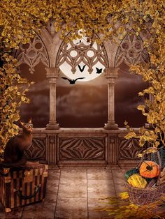 Find More Background Information about 200cm*150cm photography backdrops Moon black spider web  halloween backdrop fotografia WSJ 022,High Quality halloween minnie,China halloween costume two women Suppliers, Cheap halloween soap from Marry wang on Aliexpress.com
