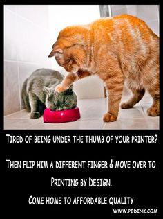 Book Printing Companies, Print Magazine, Magazines, Printer, Cats, Books, Journals, Gatos, Libros
