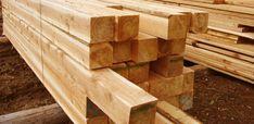 Cedar lumber: Standa