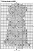 Schema punto croce Laurea 2