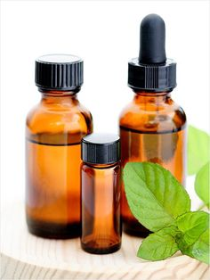 Peppermint Oil = Chewing Gum A single drop of essential oil of peppermint on your tongue instantly freshens breath and kills bacteria, according to Ute Leube, founder of haute organic skincare line Amala. Hair Growth Shampoo, Beauty Secrets, Diy Beauty, Beauty Hacks, Beauty Ideas, Cooking With Essential Oils, Health And Beauty Tips, Health Tips, Immune System