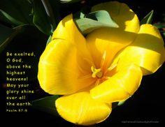 Psalm 57:5  www.Facebook.com/InspirationalCreationsByDebForster