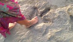 Vrouw ontdekt 130 miljoen jaar oude voetafdruk van dinosaurus op het strand