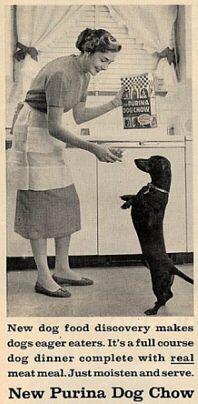 Vintage dachshund food ad.