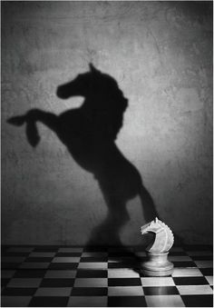 shadow of a different horse....