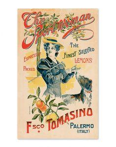 """From Palermo to America. L'iconografia commerciale dei limoni di Sicilia"""", Sellerio, Palermo 2007"""