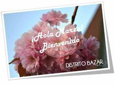 Bienvenido Marzo! DistritoBazarMx