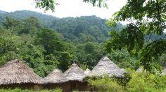 Mutanyi - Maravillosa cultura Indigena. reservas@magictourcolombia.com #wetakeyouthere