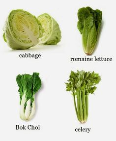 Alternative Gardning: How to Re-Grow Celery, Bok Choi, Romaine Lettuce & Cabbage from Kitchen Scraps