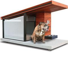 Passive Solar Dog House Keeps Your Pet Comfortable All Year Long - Slash Pets Tiny House Village, Passive Solar, Pet Feeder, Front Windows, Foam Pillows, Warm In The Winter, Stay Cool, Pet Bowls, Dog Houses