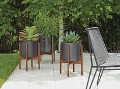 Case Study Planters with Walnut Stand - Case Study Planters in Black & Walnut - Outdoor - Room & Board