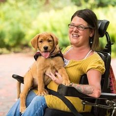 This is our friend Linzey Jo. She is the founder of Phoenix Assistance Dogs in PA. Her experience with her own assistance dog inspired her to create an organization that raises and trains service dogs at very low cost for disabled handlers. They have run into a huge vet bill and need our help. If they can't raise 10k by Christmas, they will be forced to shut down. Please help us #SavePAD .