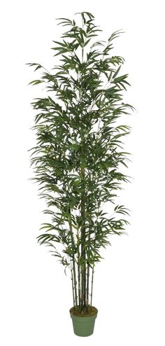 Features:  -Natural-looking life-like lush artificial bamboo tree.  -Made in the…