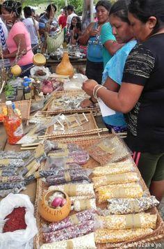 Barracas exibiam sementes e incentivavam a troca ... Feira de sementes reúne indígenas de Roraima, Xingu e Alagoas na Raposa-Serra do Sol