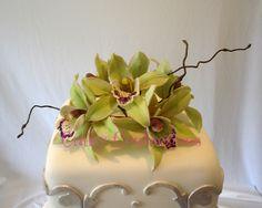 Sugar Cymbidium Orchids