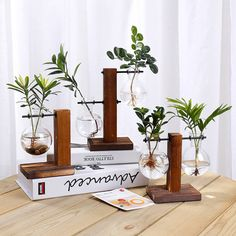 Glass Bulb Vase With Vintage Wooden Stand For Hydroponics Plants,Water Plant Vase Set,Glass Vase,Pla Hydroponic Farming, Hydroponic Growing, Hydroponic Gardening, Growing Plants, Organic Gardening, Vegetable Gardening, Container Gardening, Indoor Hydroponics, Gardening Hacks