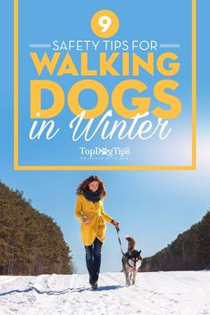 9 Safety Tips for Walking Dogs In Winter and How to Protect Your Dog.