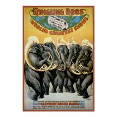 Shop Ringling Brothers Circus Elephant Brass Band Poster created by postershoppe. Old Circus, Circus Art, Circus Theme, Circus Train, Caricatures, Elephants Playing, Circus Elephants, Ringling Brothers Circus, Ringling Circus
