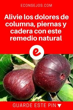 Raul Roulien Raul Roulien (October was a Brazilian actor, screenwriter and film Herbal Remedies, Home Remedies, Natural Remedies, Natural Medicine, Healthy Life, Life Is Good, Food To Make, Herbalism, Avocado
