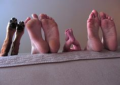 Family Photo: I can't stop laughing at this dog's feet... yes, they are part of the family!!!!