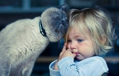 Per Tutti Gli Apassionati Di Gatti