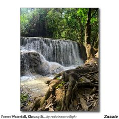 Forest Waterfall, Khoung Si Falls, Laos Postcard