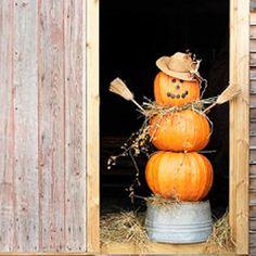 Halloween curb appeal - Pumpkin Bucket Man