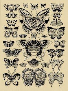 old borboletas