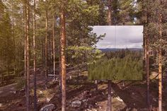 Mirror cube hotel room in the forest.