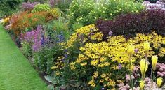 Дизайн садового участка: делаем красивый миксбордер на даче