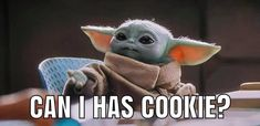 Yoda Funny, Yoda Meme, Funny Picture Quotes, Funny Pictures, Yoda Images, Star Wars Wallpaper, Cute Memes, All Things Cute, Cute Disney