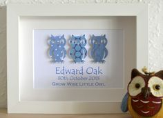 Wise Owl Paper Art Framed Baby Plaque