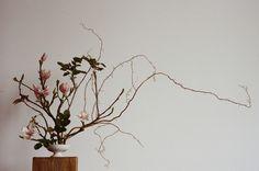 Erba Floral Studio for Kinfolk magazine Volume 8 Image by Parker Fitzgerald
