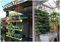 02-jardin-vertical-canalones