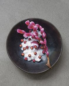 Chef Rodolfo Guzmán offers an inventive take on indigenous Chilean ingredients at Boragó, his Santiago eatery Rodolfo Guzman, Canapes Catering, Wild Onions, Restaurants, Savoury Dishes, Culinary Arts, Plated Desserts, Food Pictures, Food Art