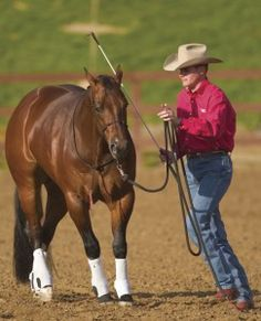 Learn How to Gain Your Horses Respect with Top Horse Trainer Clinton Anderson | MyHorse Daily – MyHorse Daily