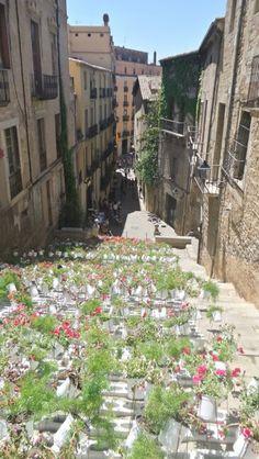 """Gerona """"Temps de Flors"""" (flowers time)"""