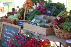 Apollo bay saturday market