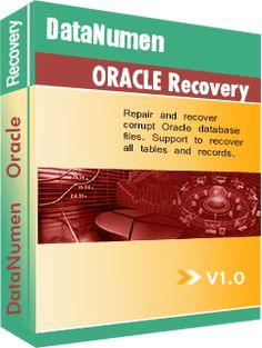 Several factors can cause loss or damage to database files. This article offers you safety tips to help you minimize the loss when Oracle database file corruption occurs. #CorruptDBF #CorruptOracle #CorruptedDBF #CorruptedOracle #DamagedDBF #DamagedOracle #DataNumenOracleRecovery #DBFCorruption #DBFFix #DBFRecovery #DBFRepair #FixDBF #FixOracle #OracleCorruption #OracleFix #OracleRecovery #OracleRepair #RecoverDBF #RecoverOracle #RepairDBF #RepairOracle