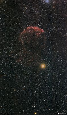"""""""Jellyfish of the Deep Sky"""" by Will Vrbasso (www.stellaraustralis.com)  This is my image of the """"Jellyfish"""" Nebula (IC 443) taken a couple of nights ago. This gelatinous zooplankton looking nebula is roughly 5000ly from Earth as a result of a supernova explosion some odd few thousand years ago. A bit of a fainter target, especially with an unmodified DSLR camera - I probably should've gone for a longer exposure. this image was a stack of 11 light frames, ISO1600 of 5 minutes each."""