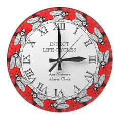 For Science Class / Boy or Girl who Loves Insects.  Cicada Clock.