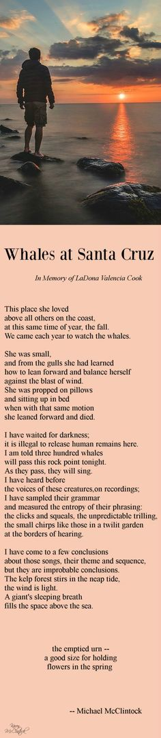 Poem: Whales at Santa Cruz -- by Michael McClintock.