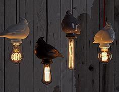 "Check out new work on my @Behance portfolio: ""LampBird"" http://be.net/gallery/51955893/LampBird"