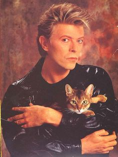 "In one of the most famous images of David Bowie, he's holding a cat. He also has a song called ""Cat People."" I'm just putting two and two together here, people."