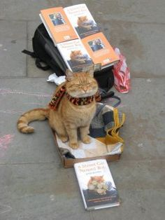 A Street Cat named Bob - live in the streets